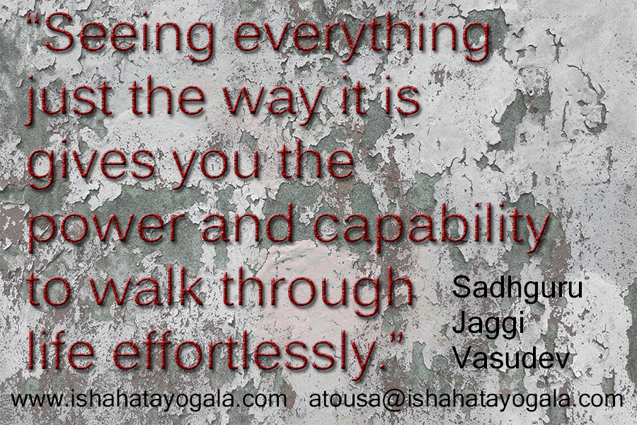 sadhguru quote